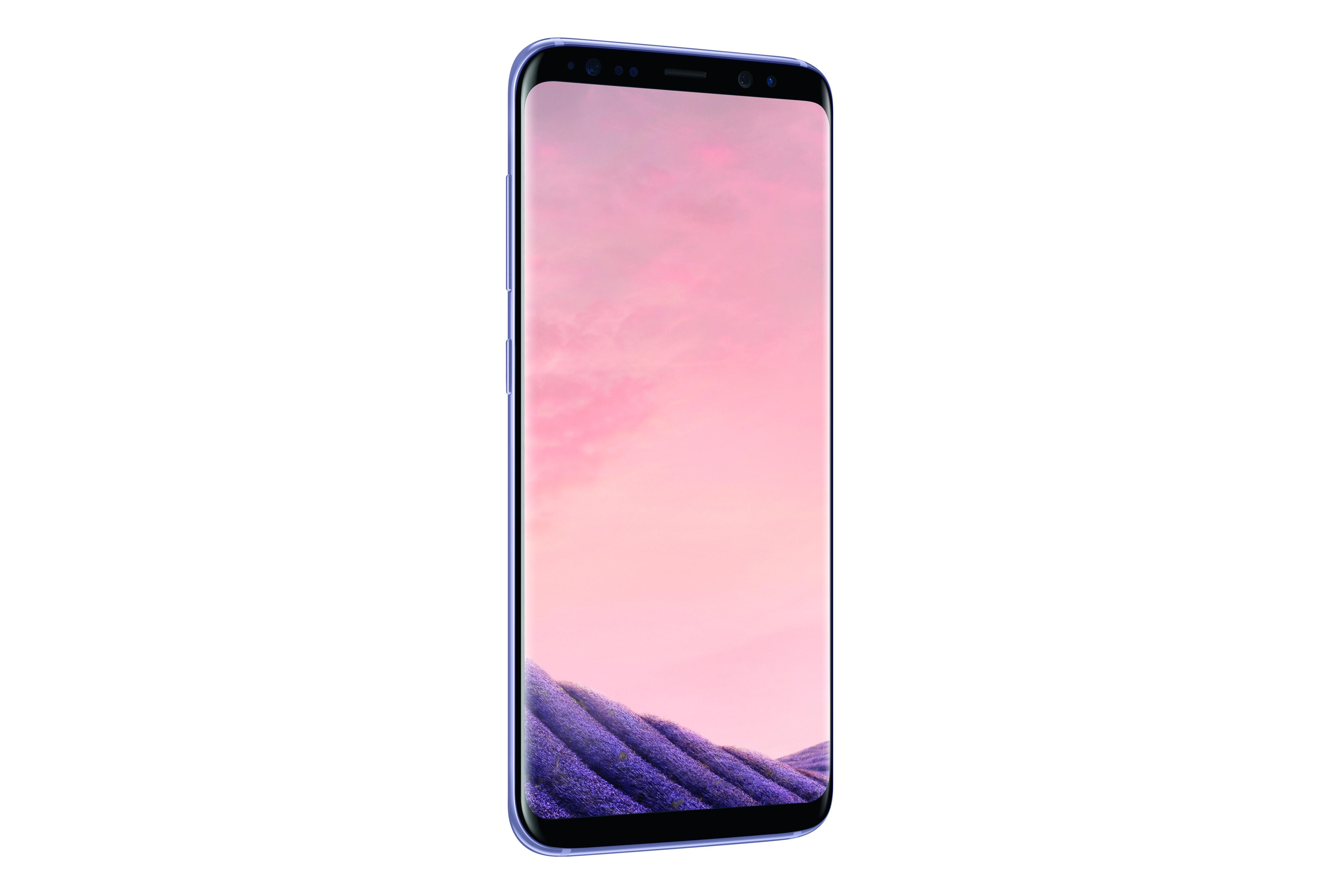 Das neue Samsung Galaxy S8 SM-G950F in Orchideen-Grau