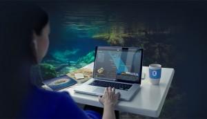 Reef Interactive App